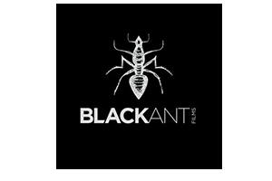 blackant